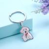 Porte-clés Animaux de compagnie photo couleur - Argent sterling